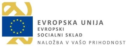 Sodelovanje vrtca v projektu MIZŠ, sofinanciranega s sredstvi evropskega socialnega sklada, 1. zaposlitev